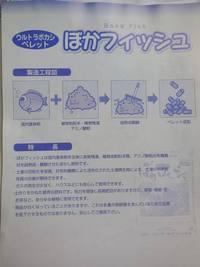 ファイル 133-4.jpg
